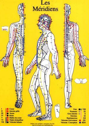 Résultats de recherche d'images pour «acupuncture + méridiens»